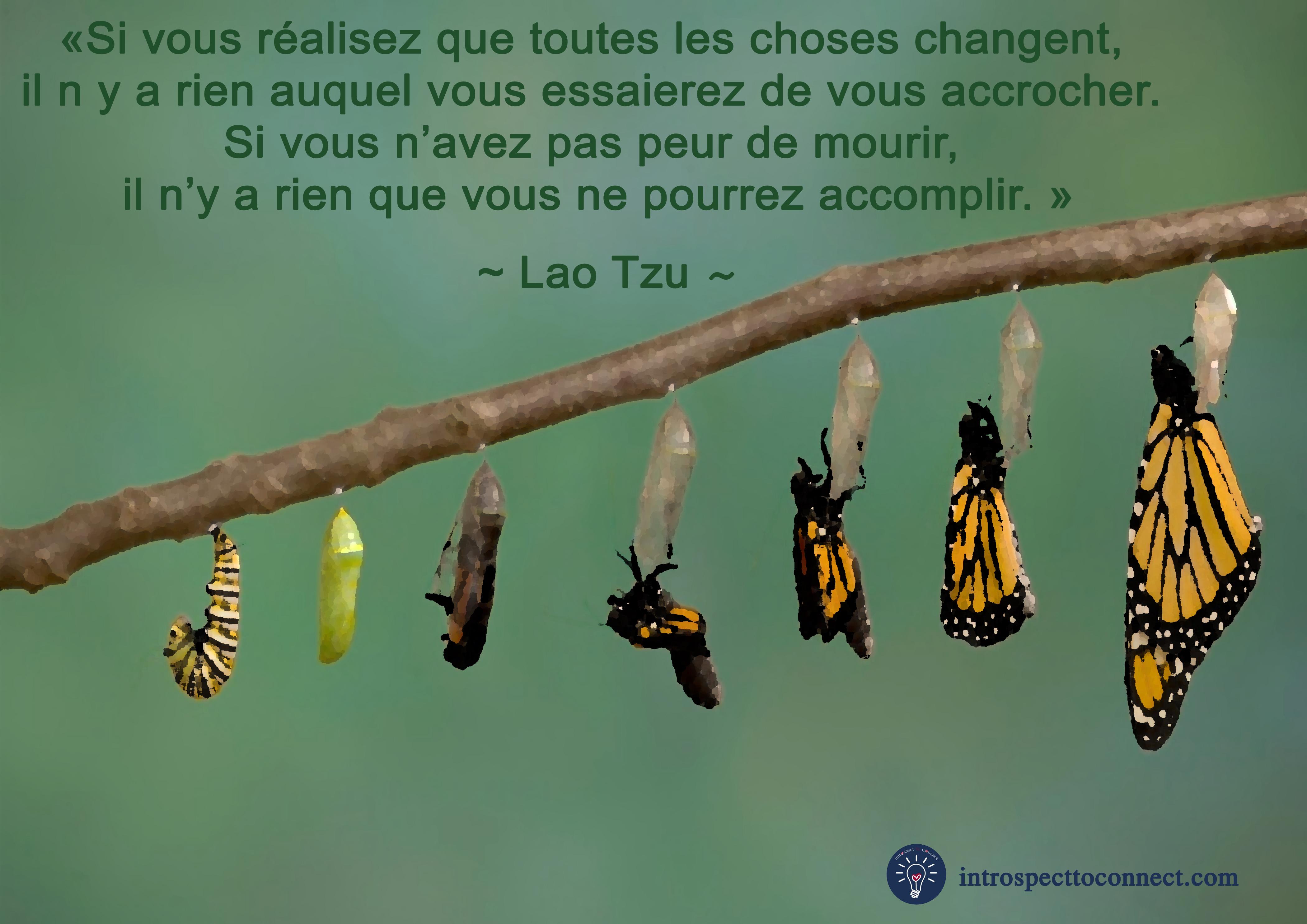 changement 8 LAO TZU4 copie.jpg