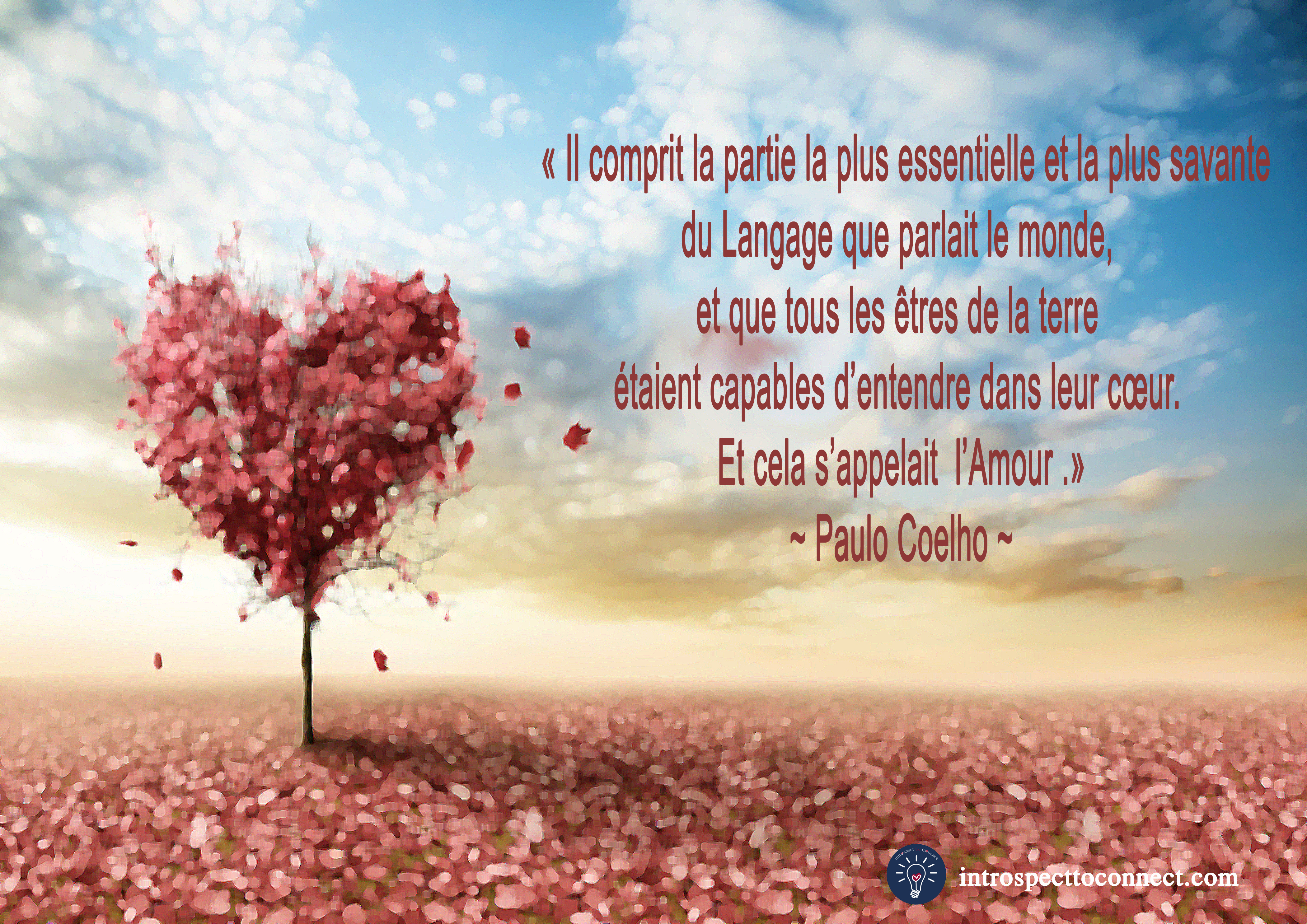 citation-coelho-5-copie