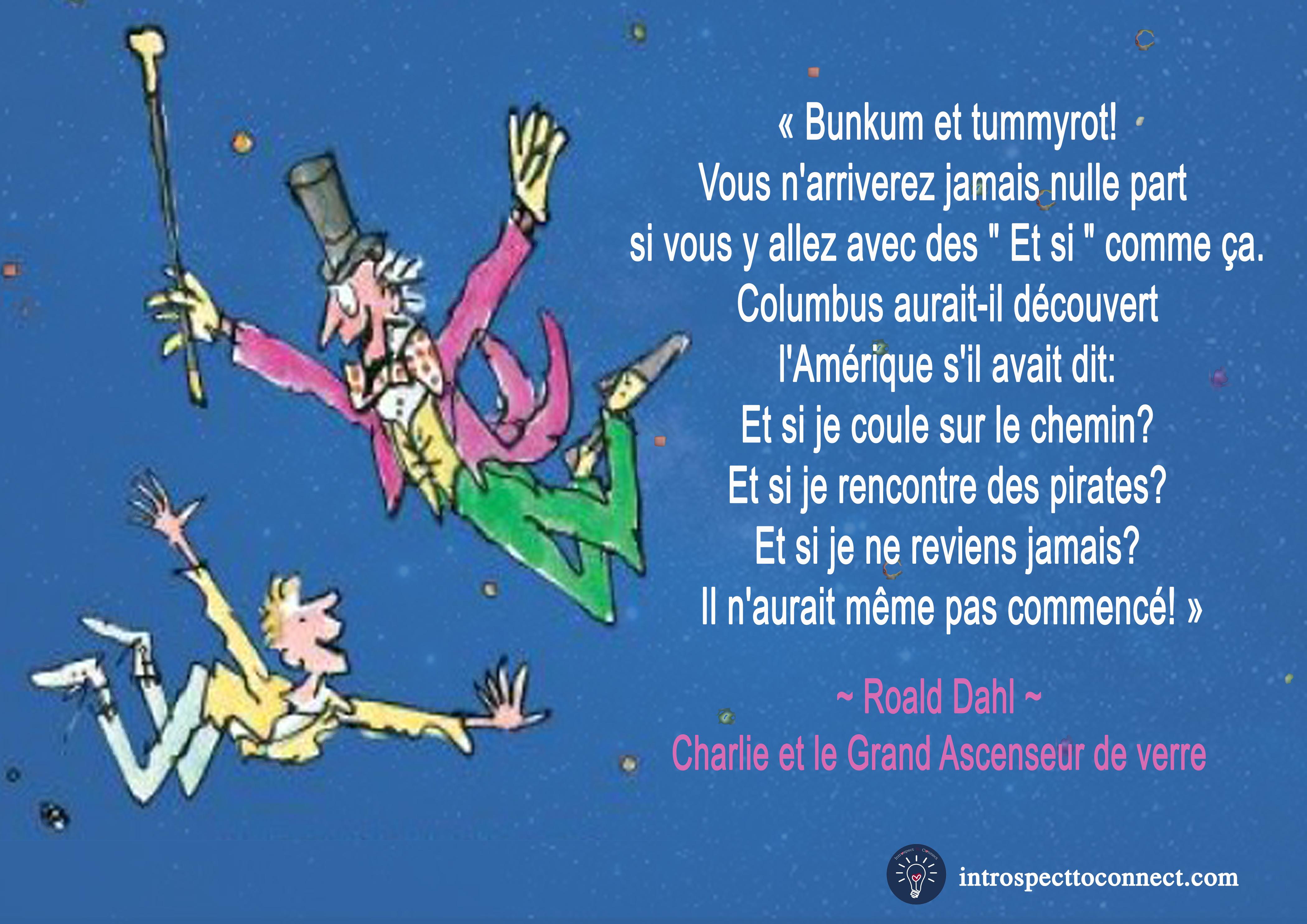 Roald dahl 2 citation copie 3